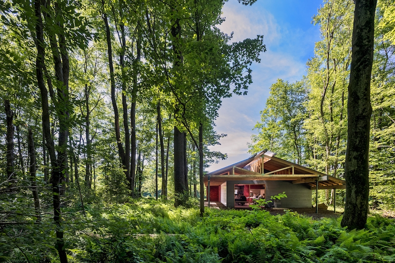 High meadow studio in the forest