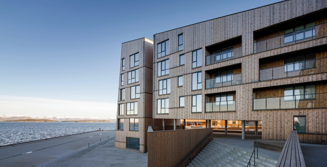 Building wood towers: How high is up for timber structures?