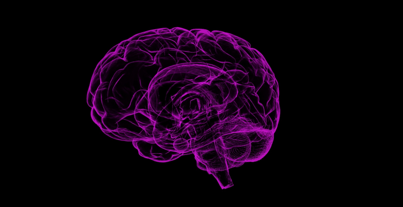 Call for research partners: The neuroscience behind decision making in AEC