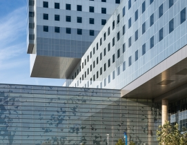 Big D's billion-dollar baby: New Parkland hospital tops the chart