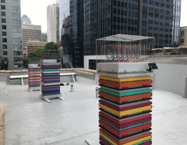An apiary for the sanctuary