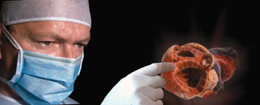 RealView's 3-D holographic projection of a heart