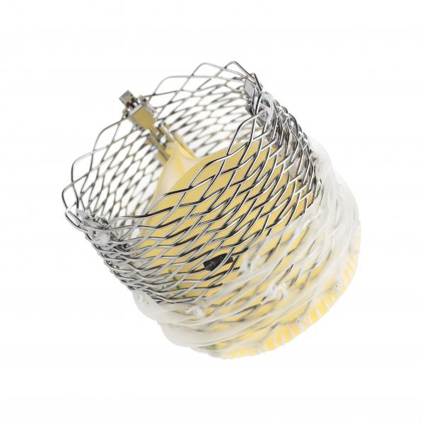 Boston Scientific Receives FDA Approval for Lotus Edge Aortic Valve System