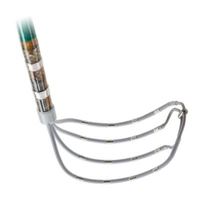 Abbott Announces European Launch of Advisor HD Grid Mapping Catheter, Sensor Enabled