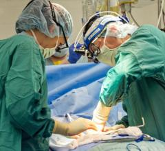 heart-lung machine, ECMO, levosimendan, heart failure drug, cardiovascular surgery outcomes, ACC.17 study