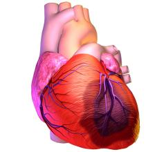 Placental Stem Cells Can Regenerate the Heart After Heart Attack