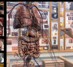 Medivis Unveils AnatomyX Augmented Reality Education Platform