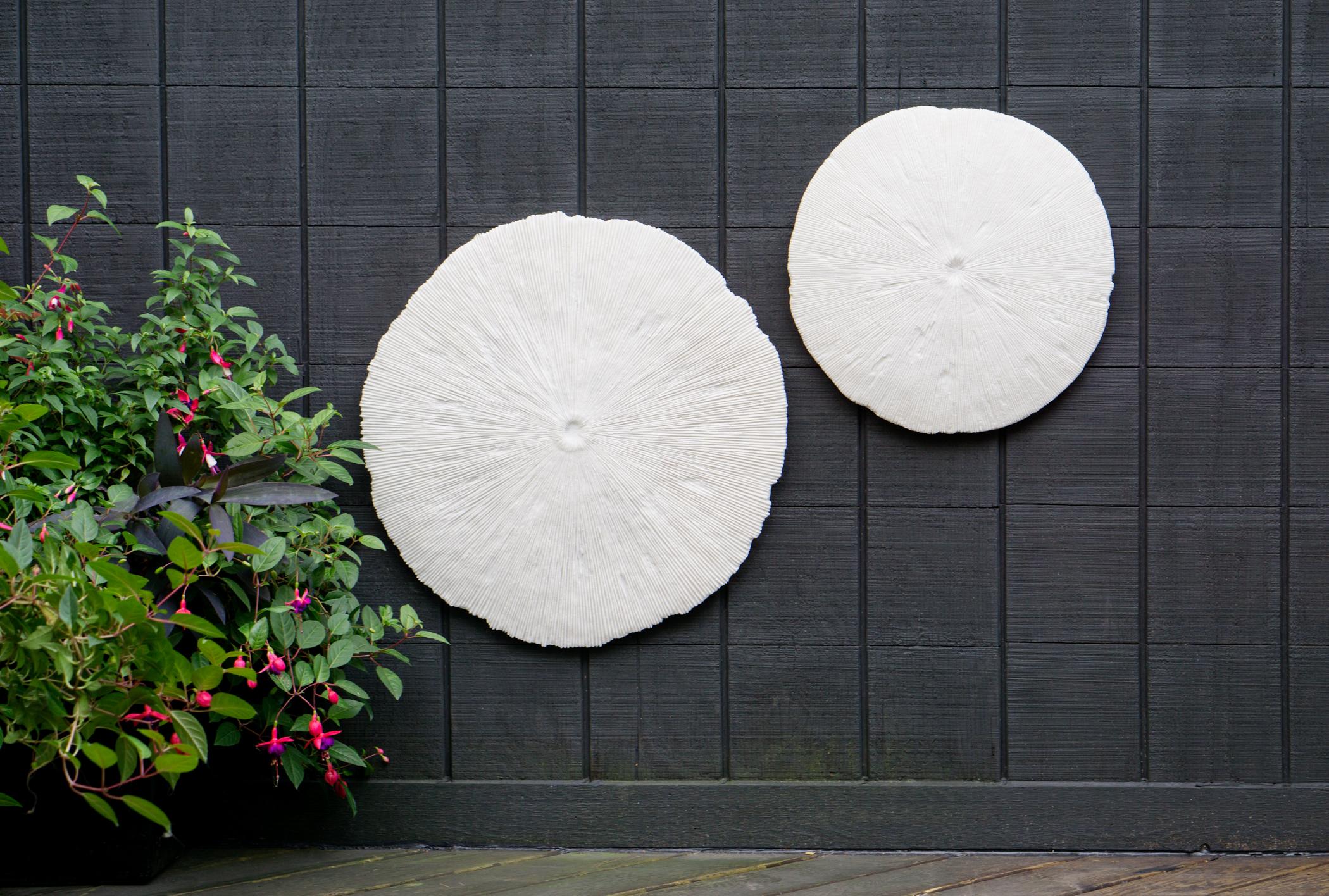 Gold Leaf Design sand dollar wall art
