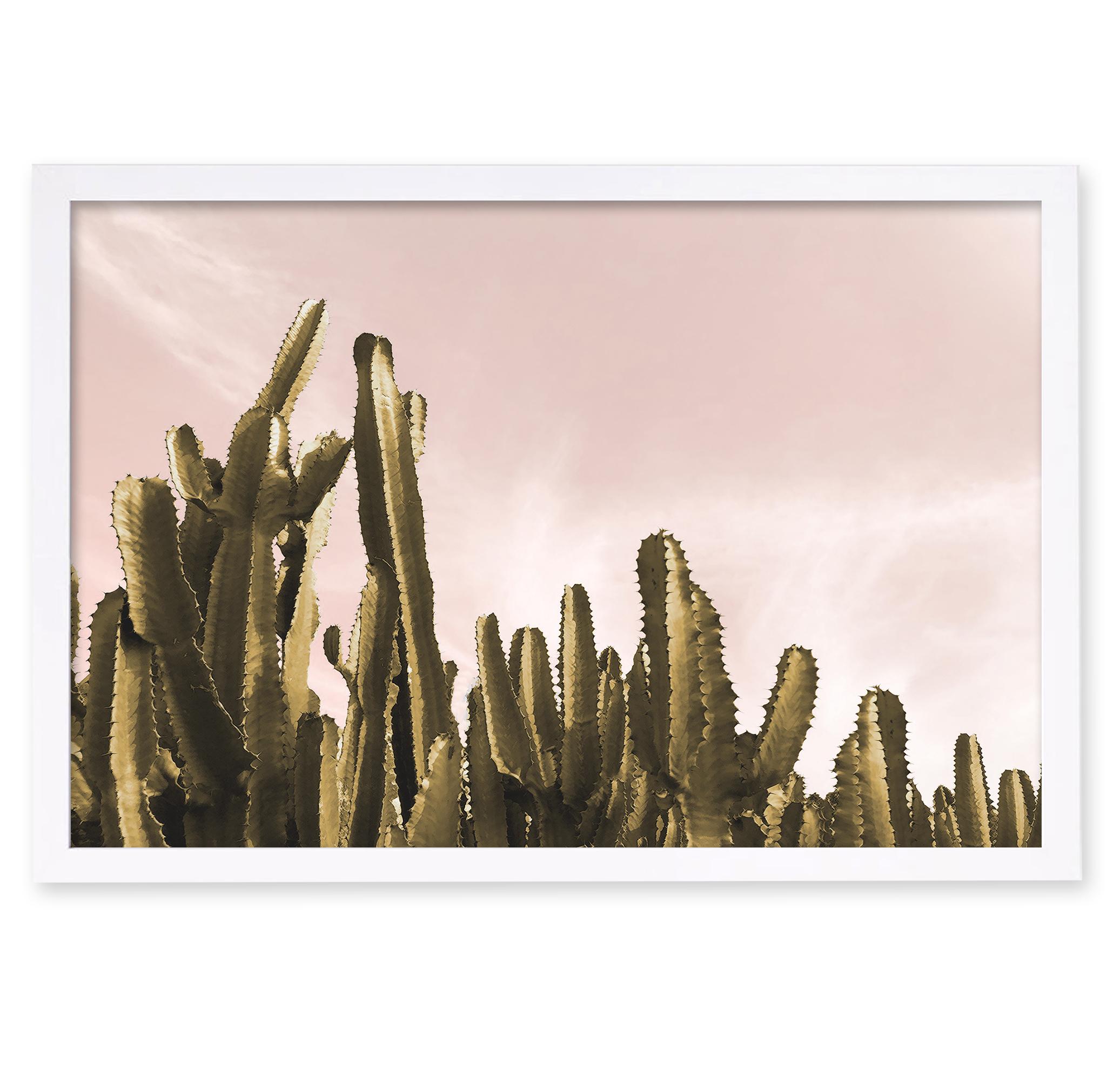 Oliver Gal Dream Landscape Cactus