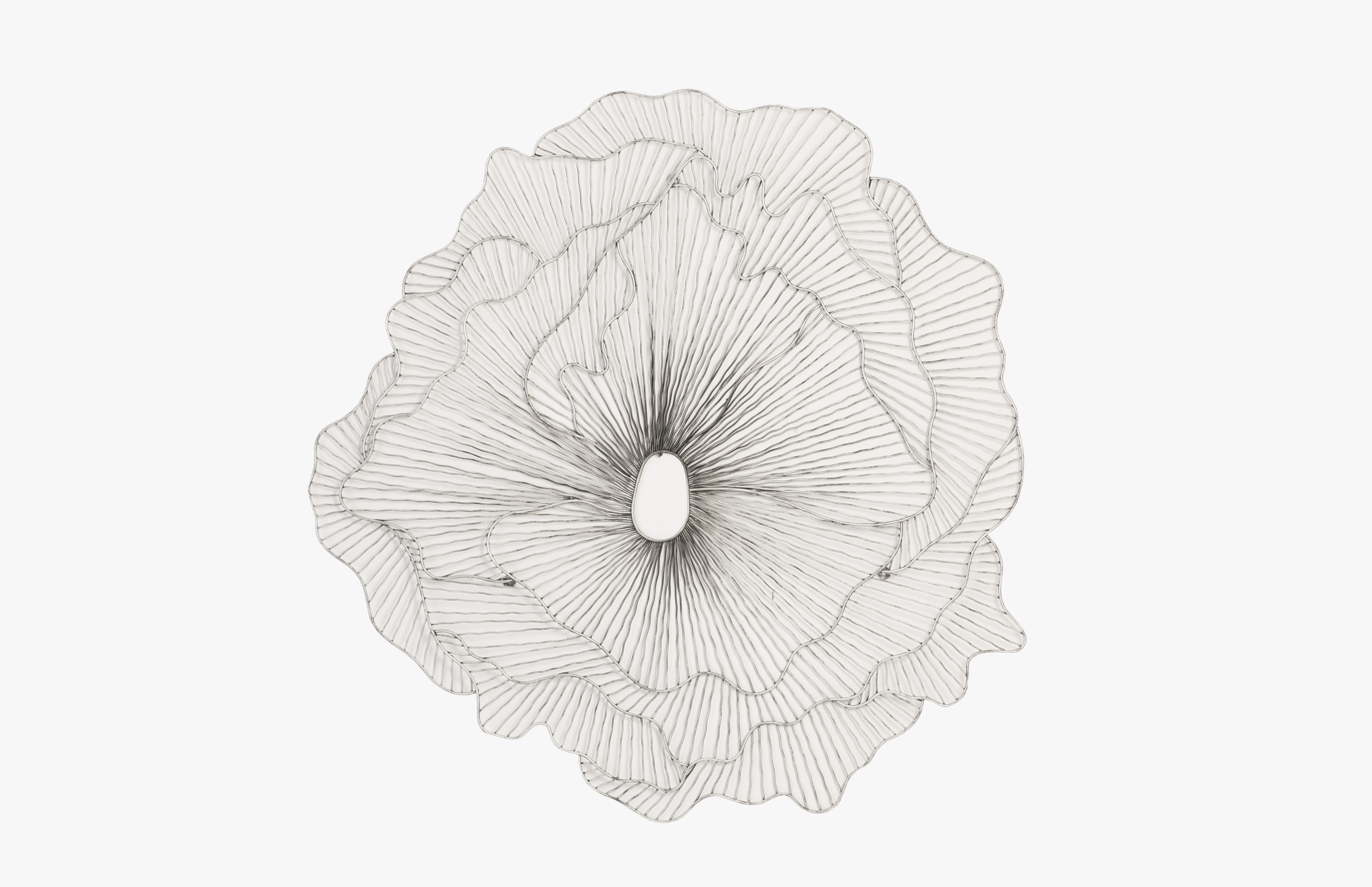 Phillips Collection Flower wall art