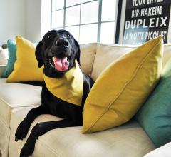 Culp-Upholstery-Fabrics-LiveSmart