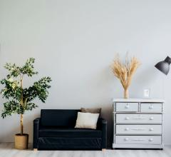 Interior of home with plant, sofa and dresser.