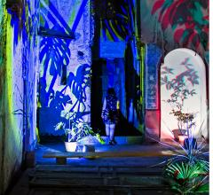 Lighting design Monstera Deliciosa in the palace Palazzo di Napoli in the heart of Palermo.