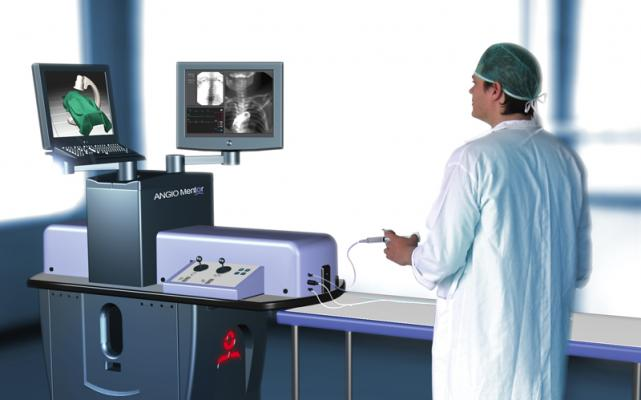 CT Datasets Now Enable Patient Specific Endovascular Procedure Simulation