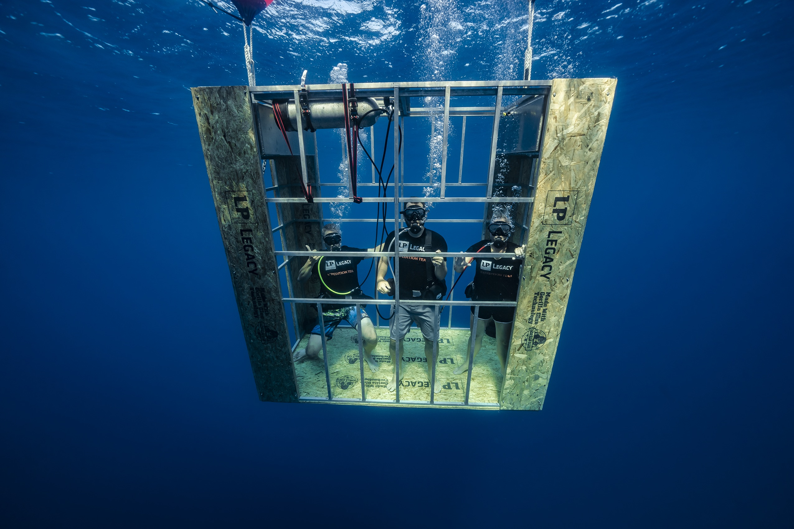 Builders want proof of performance. LP took it to the extreme by sending LP Legacy sub-flooring panels diving with sharks.
