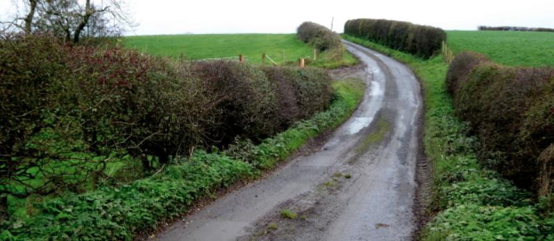 Steep climb_road