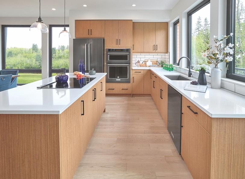 2019 Professional Design Awards Gold Infill kitchen