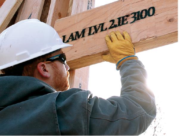 2019 top 100 products-structural-Boise Cascade-2.1E Versa-Lam