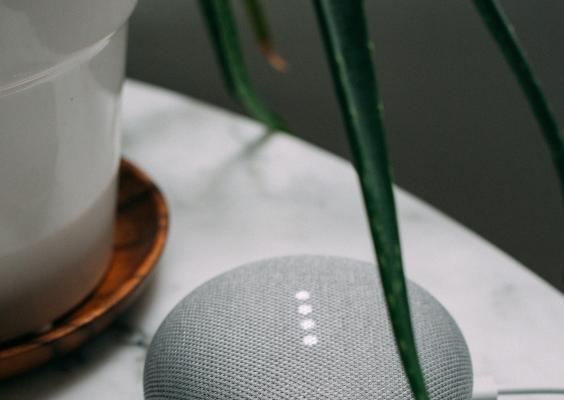 Google Home and houseplant
