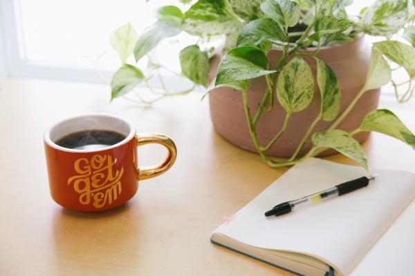 Mug, notebook, plant on table