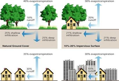 Low-impact development practices for stormwater management