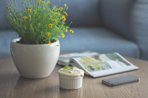 green smart home