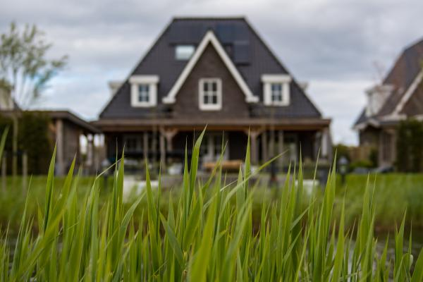 house and grass