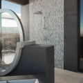 The New American Home 2019_outdoor shower_interior view