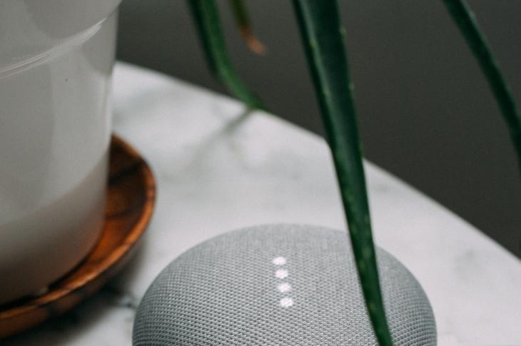 Google Home and houseplant