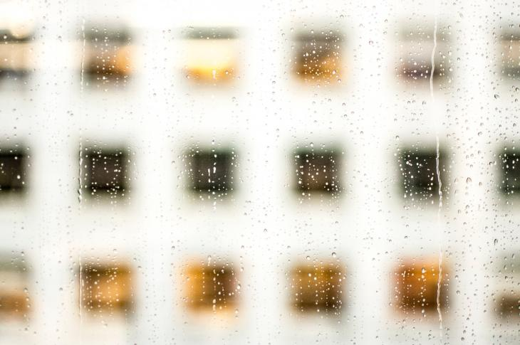 Windows through a window pane