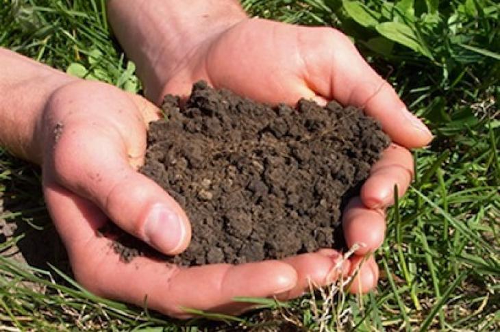 builder soils test-soil in hands-photo