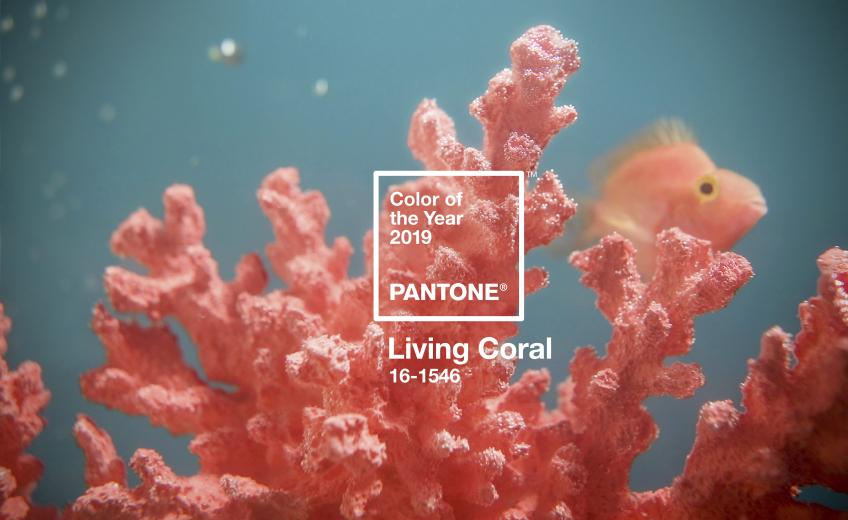 17 Products In Pantone Living Coral Residential Products