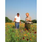 Plateau herbicide from BASF Professional Vegetation Management