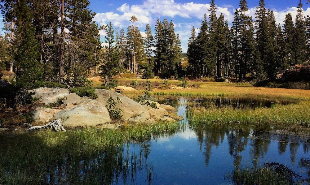 Nonprofits develop bond to combat wildfire-related erosion damage