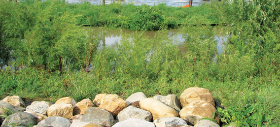 County Regional Airport Wisconsin Storm Water Filtration May 2014