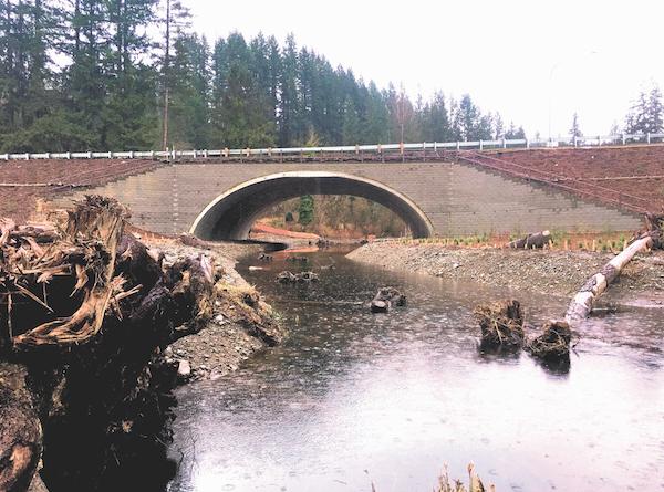 Culvert renovation improves fish migration in Washington