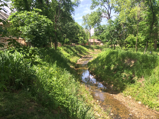Vensel Creek was fully vegetated and providing erosion control protection