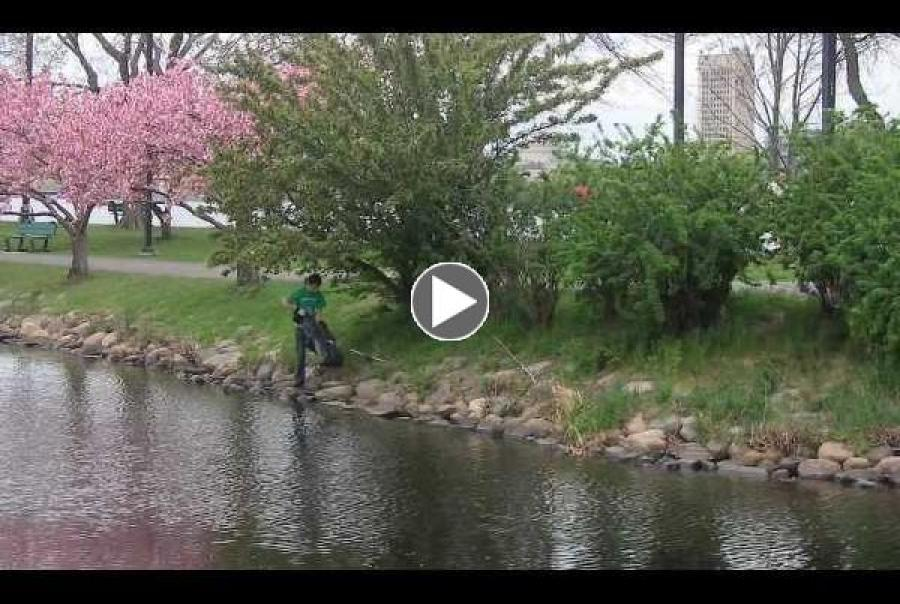 EPA Urban Waters Voices Video Series Locally Led Urban Water Reestoration Effort