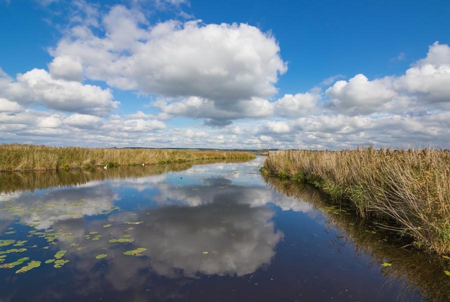study explores the rise of coastal erosion on wetlands