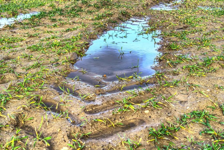 Foxconn faces fines over lack of sediment controls