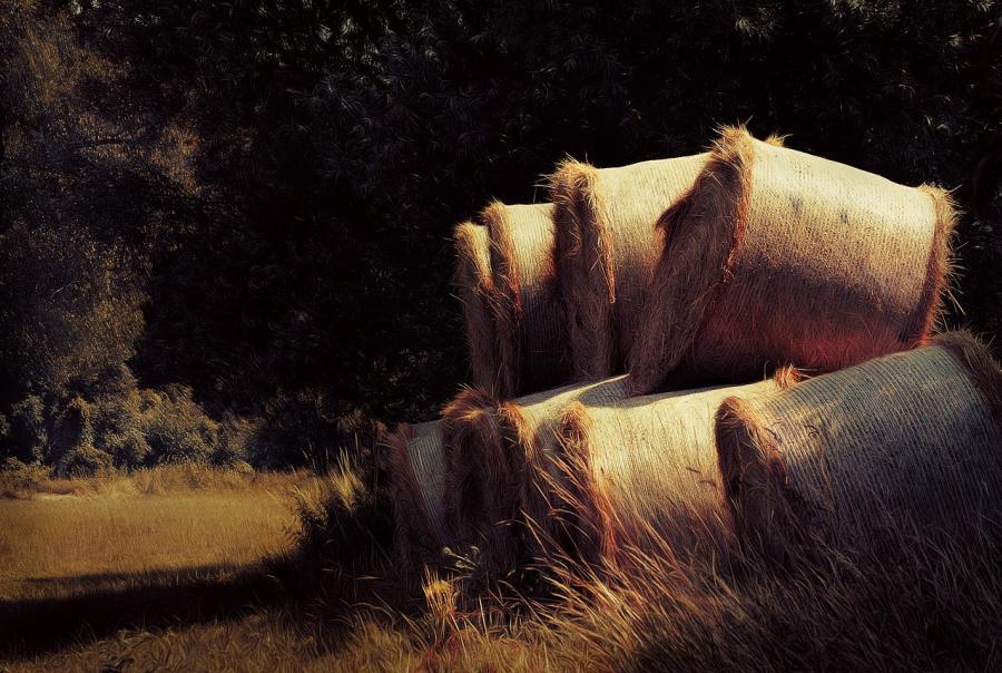 Redding, Calif., provides erosion control supplies
