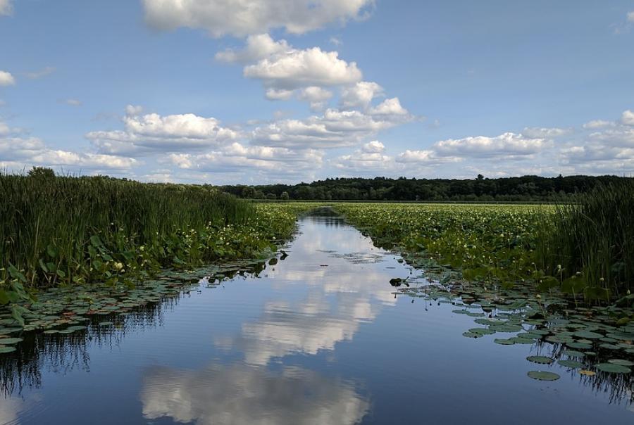 EPA recognizes coastal prairie wetland restoration project