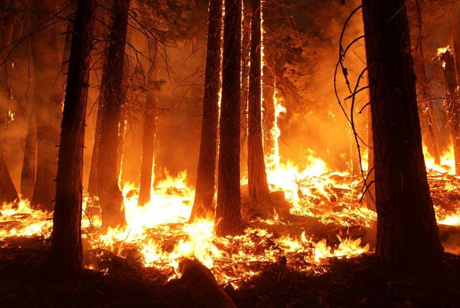 wildfires threaten erosion control and groundwater quality