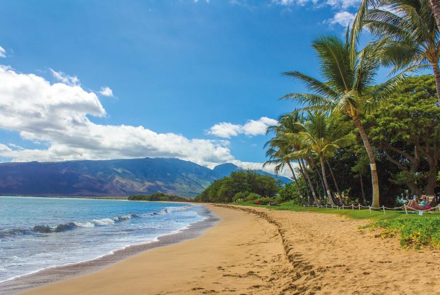 Hawaii uses erosion control mattresses