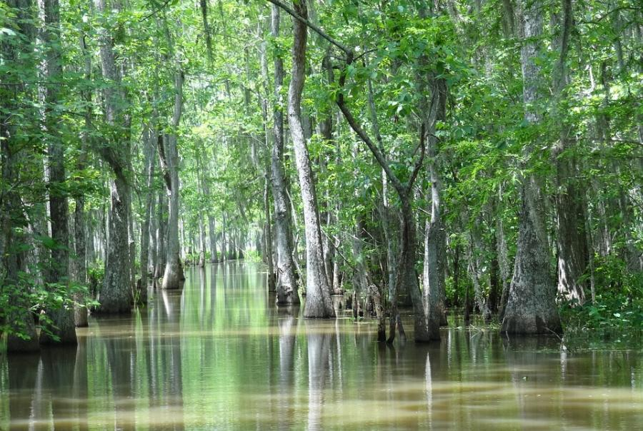 Louisiana works to create coastal erosion control plan