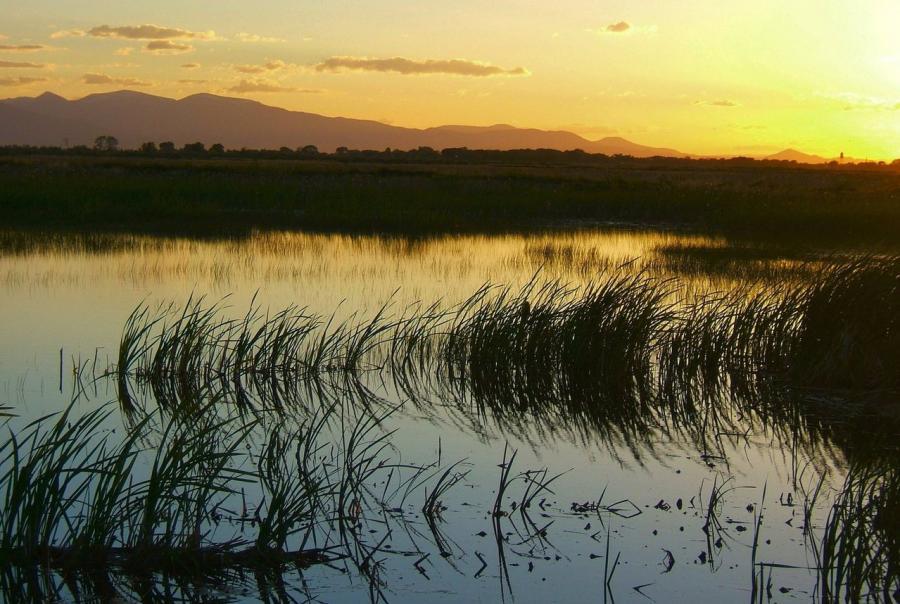 common ground, wetlands, louisiana, gulf of mexico, epa, outreach, programs