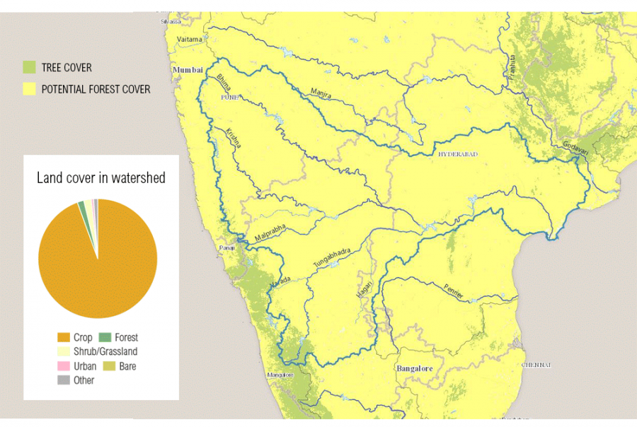 global forest watch, water, trees, watersheds, sumatra, philippines, angola