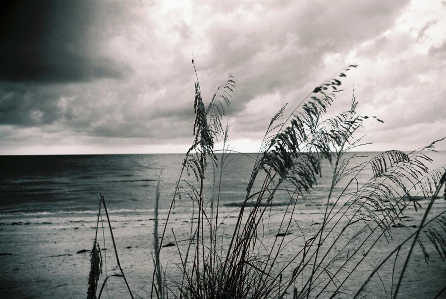 gulf coast, restoration, gulf of mexico, plan, draft, update