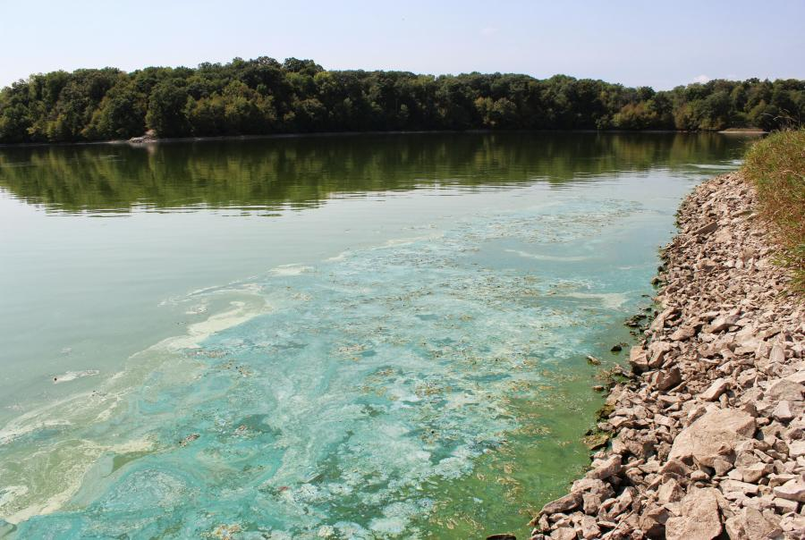 Court Ruling EPA Dead Zone Mississippi River Pollution Algae Blooms