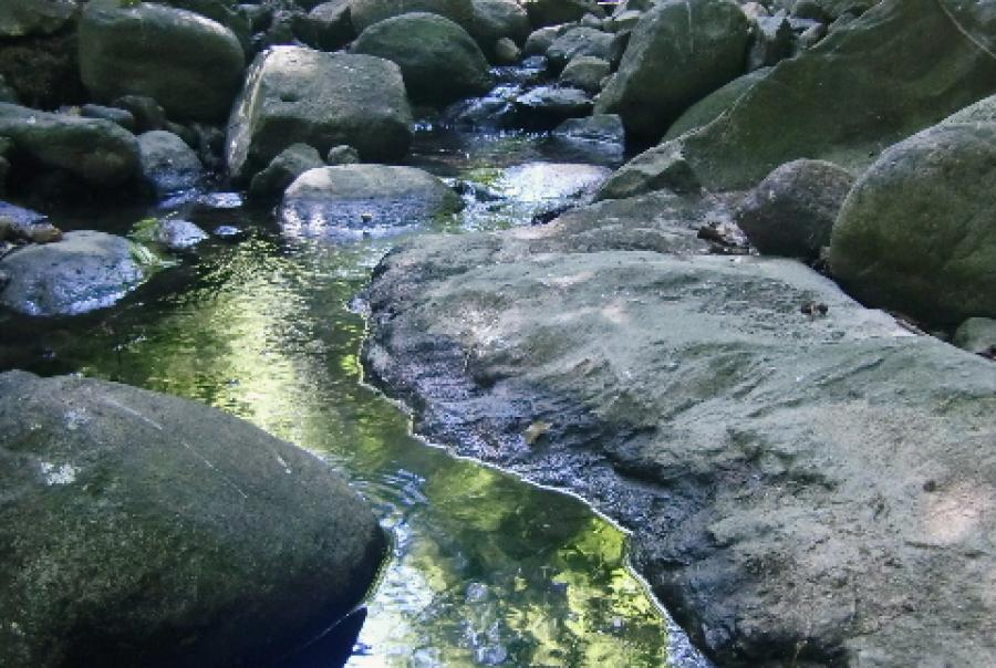 EPA Initiate Rulemaking Process for Clean Water Act Jurisdiction NACWA